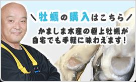 牡蠣(かき)なら赤穂市坂越『さこし』にある「鎌島水産」まで!産地直産の生牡蠣は豊かな自然が育てた自慢の牡蠣。『かましま水産』 牡蠣の購入はこちら! かましま水産の極上牡蠣が自宅でも手軽に味わえます!