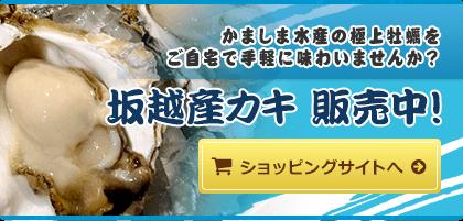 牡蠣(かき)なら赤穂市坂越『さこし』にある「鎌島水産」まで!産地直産の生牡蠣は豊かな自然が育てた自慢の牡蠣。『かましま水産』 かましま水産の極上牡蠣をご自宅で手軽に味わいませんか?