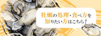 牡蠣(かき)なら赤穂市坂越『さこし』にある「鎌島水産」まで!産地直産の生牡蠣は豊かな自然が育てた自慢の牡蠣。『かましま水産』 牡蠣の処理・食べ方を知りたい方はこちら