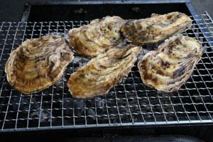 焼き牡蠣(炭火)