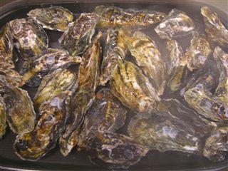 殻付牡蠣のホットプレート蒸し